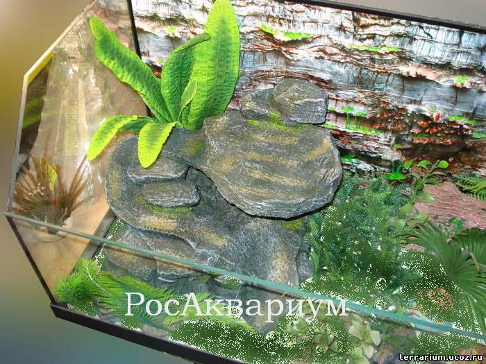 Островок для черепахи из камней своими руками 12