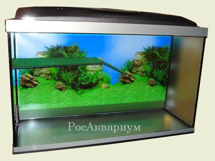 Как украсить аквариум для красноухой черепахи своими руками